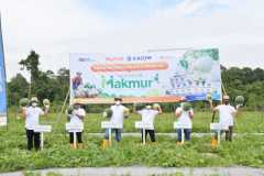 Program Makmur tingkatkan produktivitas melon-semangka 120 persen